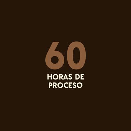 60 horas de proceso